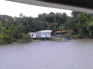 Casrtta sulla riva di un ramo del delta del Rio delle Amazzoni