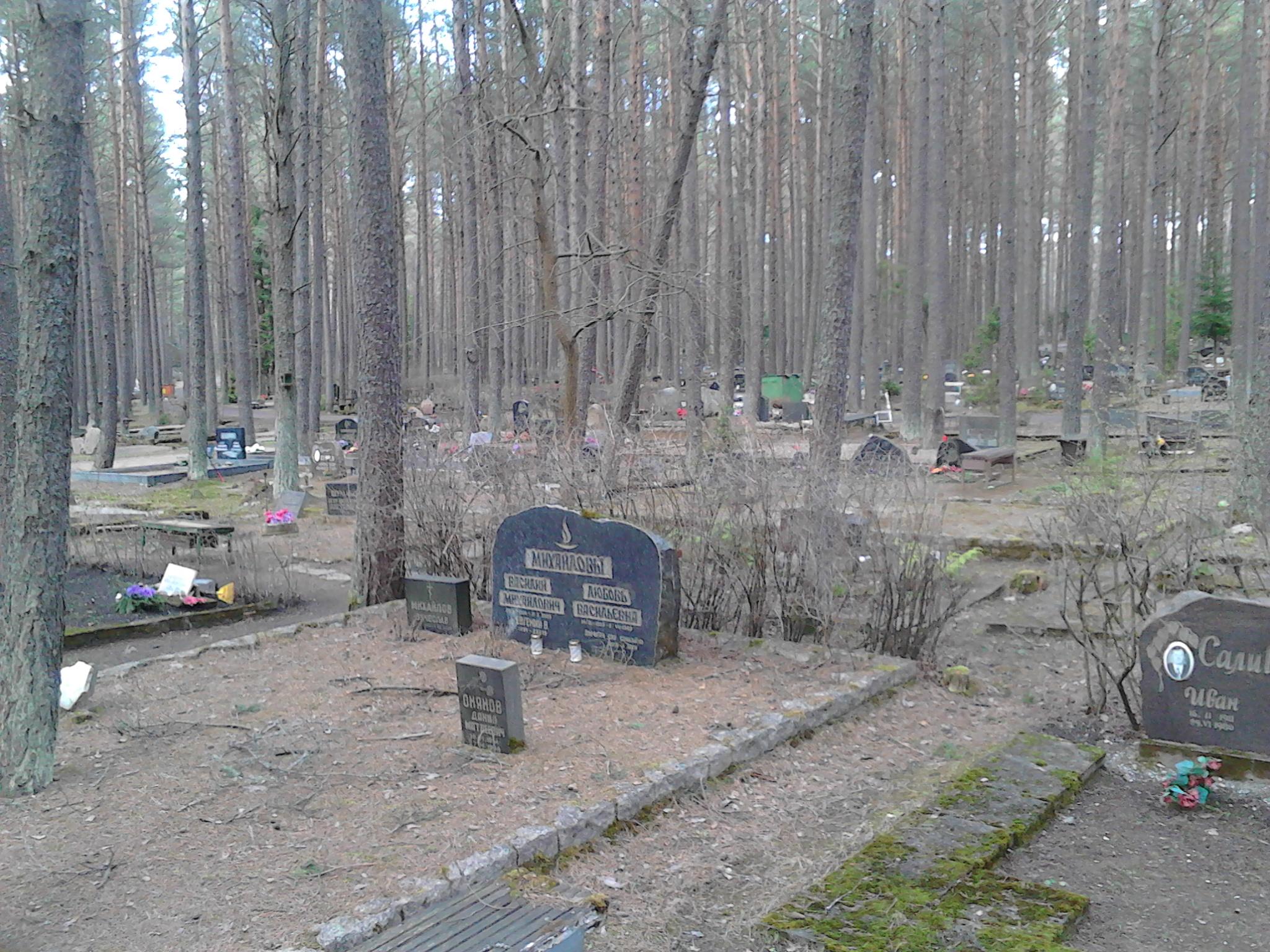 Ma anche i morti hanno la loro casa. Nel bosco, senza recinzioni, nella pace. Molto commovente.