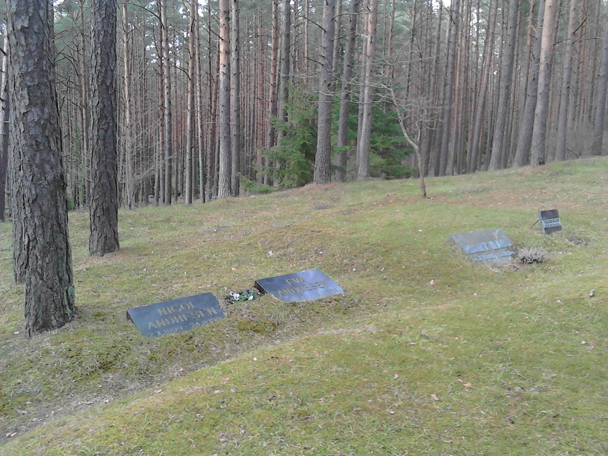 Appena un accenno di lapide nel cimitero delle celebrità nazionali, divisi per categoria.