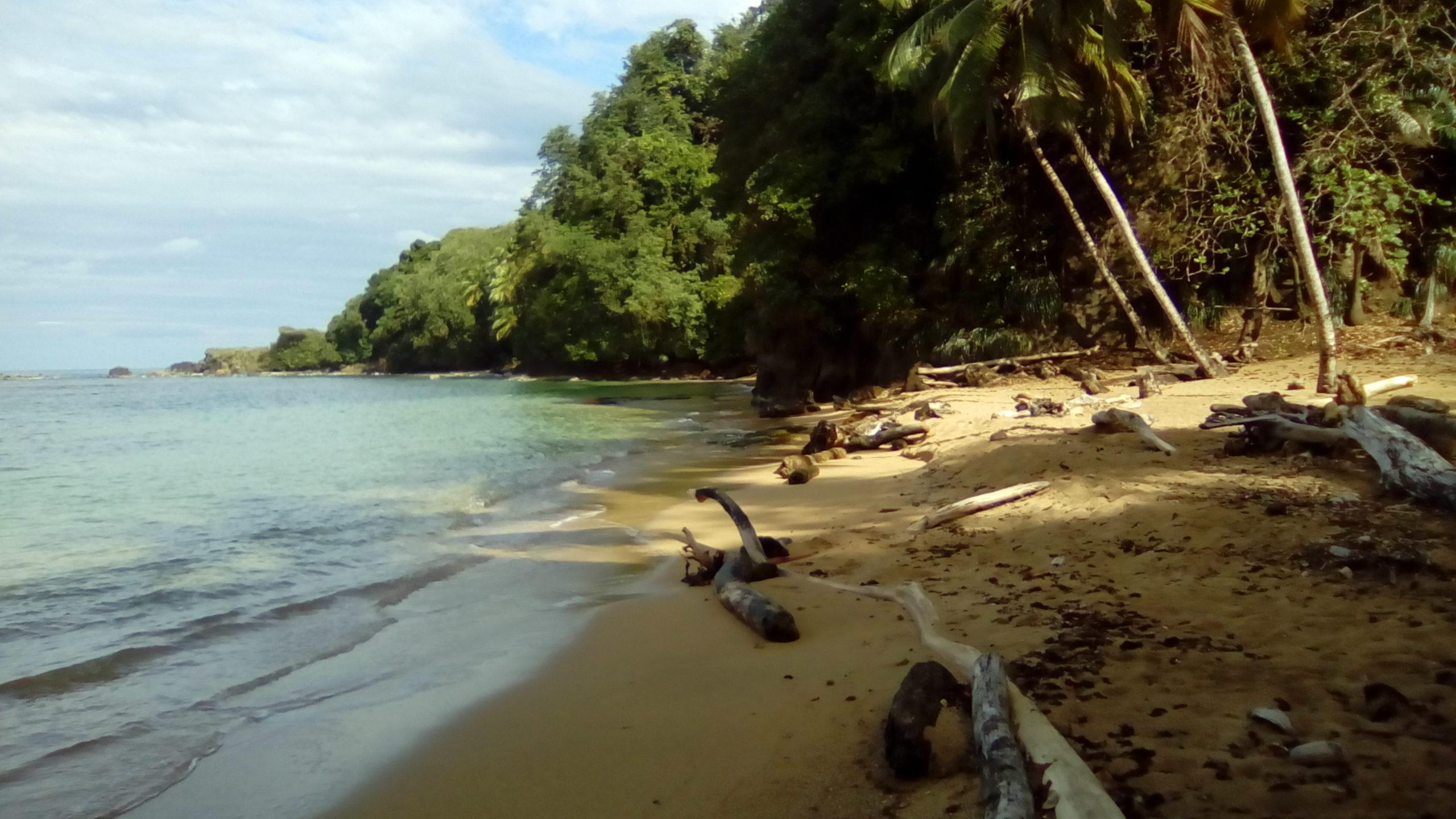 Dietro la spiaggia, cosa? Andare ai Caraibi?