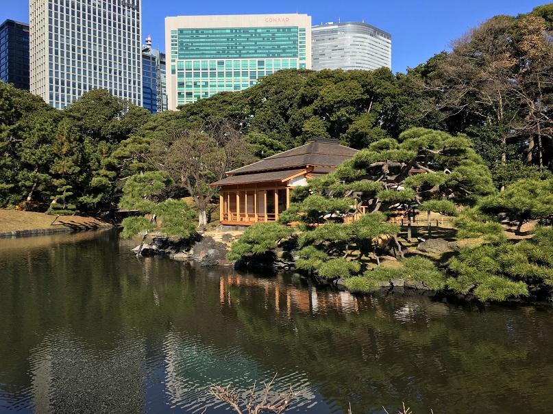 I contrasti del vivere a Tokyo